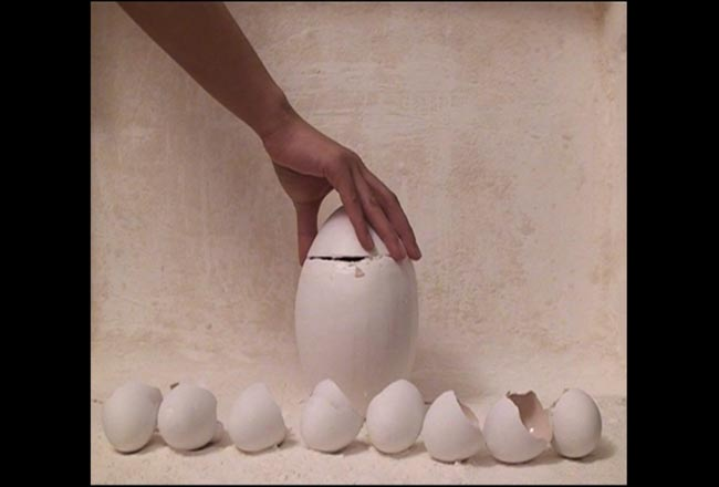 Bongsu Park, Egg series of eggs no.2, 2008. Video, edition of 5, 3'22''.