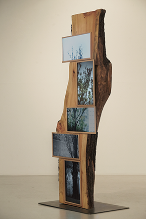 Guem MinJeong, Wailing Tree, 2014. Wood, LED Monitor, 250 x 250 x 250 cm.