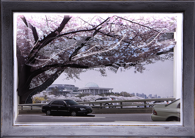 "Geum MinJeong, ""Cherry Blossom Festival in Yeouido"", 2012, Video Monitor, Photo, LED Light box, 50 x 76 x 20 cm."