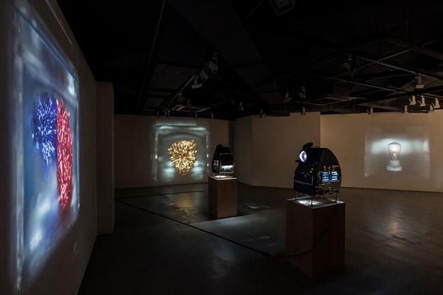 SHS--installation-view-03